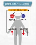 血糖値とオレキシンの関係を示す図