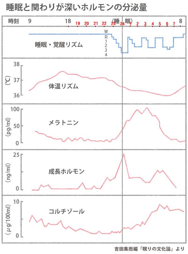 コルチゾール分泌の日内変動を示す図
