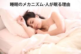 睡眠のメカニズムを説明する本の表紙