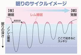 寝ている間のレム ノンレム睡眠の推移を示す図