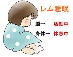 レム睡眠中の脳の強い活動性反応で生じるイメージが夢の正体であることを示す図