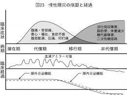 慢性膵炎の病期 症状の経過をまとめた図表