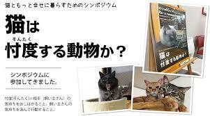 ネコは忖度できるかという疑問を示す記事