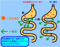 食物繊維が食後の血糖値の急激な上昇を抑えることを示す図