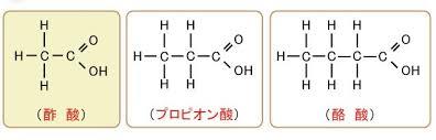 各短鎖脂肪酸の構造