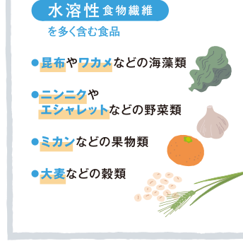 水溶性食物繊維を多く含む食物をまとめた図