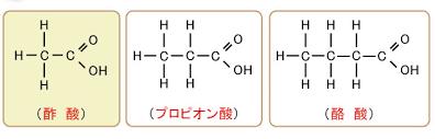 短鎖脂肪酸の図示