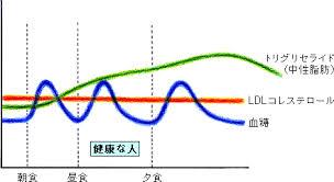 血中中性脂肪値の日内変動を示すグラフ