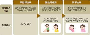 糖尿病性腎症 検査と対策