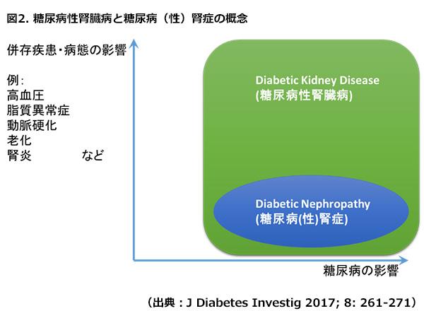 DKDのコンセプトを説明する図