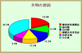 失明原因の20%ほどを占めることを示すグラフ