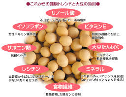 大豆に含まれているビタミン ミネラル 食物繊維