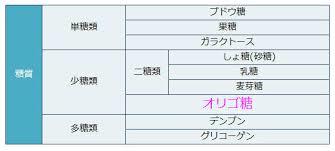 糖質の分類表