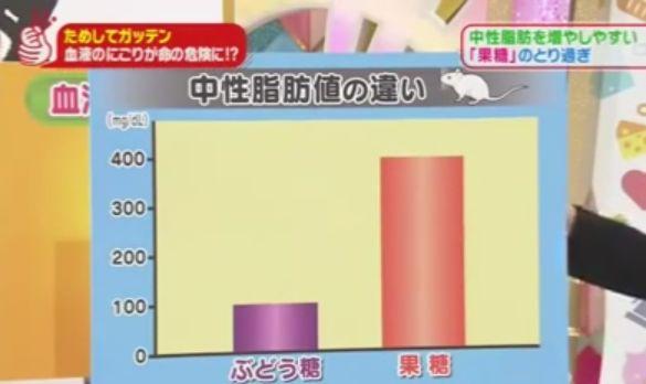 果糖が中性脂肪に変換されやすいことを示すグラフ