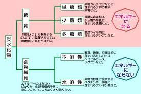 糖質と食物繊維の差異を示す図