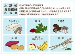 水溶性食物繊維の特性を示す図