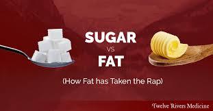 糖質・脂質論争を伝えるポスター