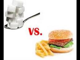 糖質・脂質論争を示す図