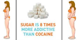 砂糖への依存性は コカインより大きいことを示す図