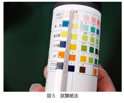 尿の試験紙の写真