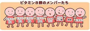 ビタミンB群の8種類のメンバーを示した図