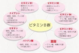 ビタミンB群の作用についてまとめた図