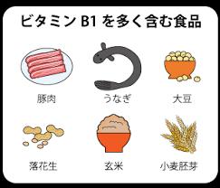 ビタミンB1を多く含む食品をまとめた図