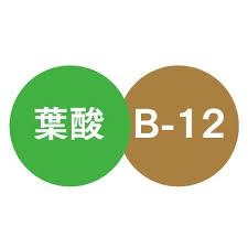 ビタミンB12と葉酸はDNA合成 赤血球成熟といった 遺伝子や細胞の成り立ちを協力して支えることを示す図