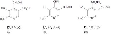 ビタミンB6 B12