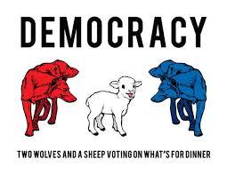 民主主義の要は多様性であることを強調する図