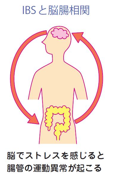 機能性胃腸障害とうつ病との関連を示す図