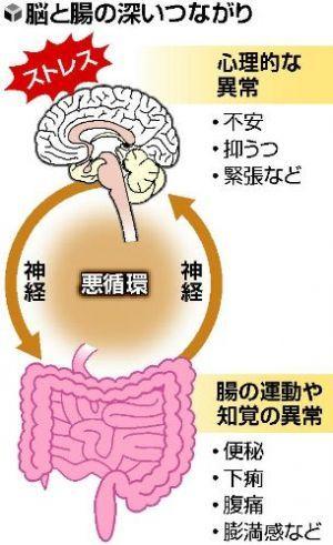 機能性胃腸障害における脳と腸管の深いつながりを示す図