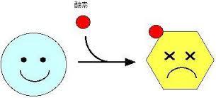 酸素との反応で傷害が生じることを示した図