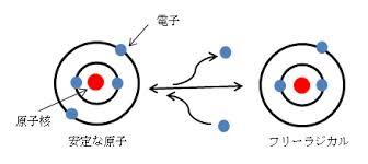 フリーラジカルの説明図