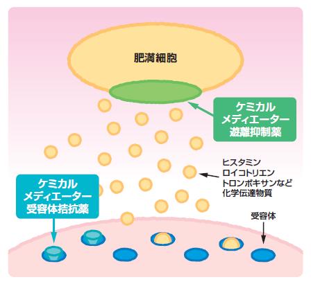 ケミカルメデイエーター遊離抑制薬の作用機序を示す図