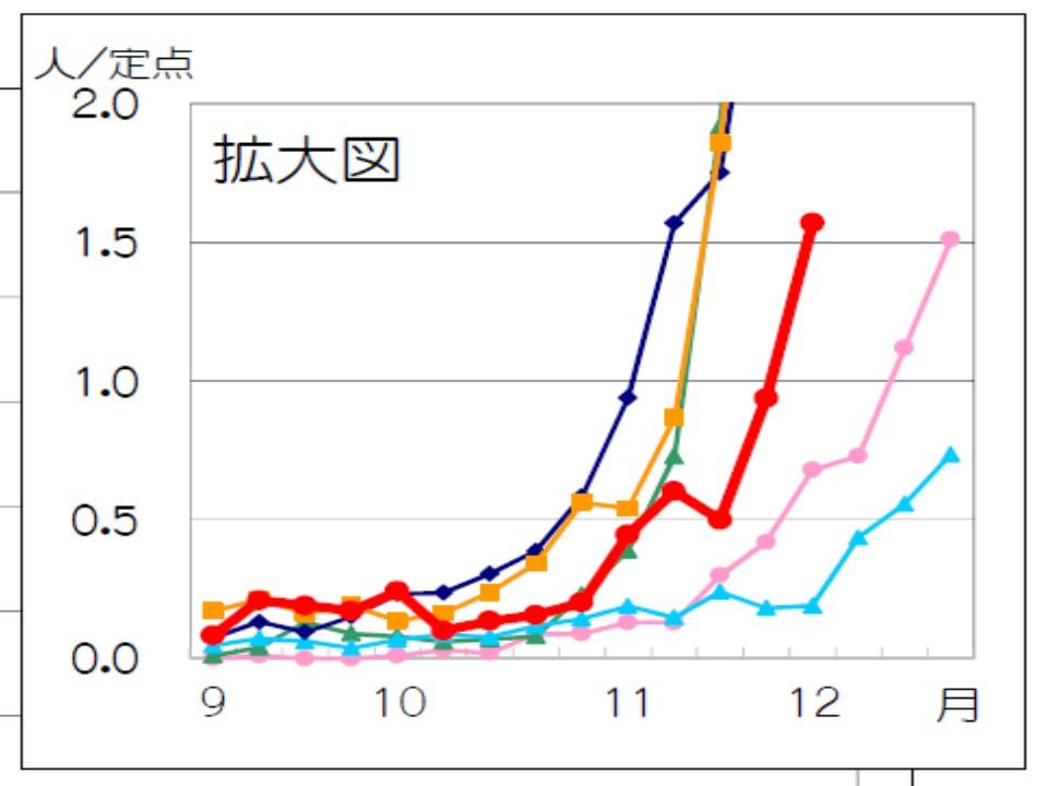 患者さんの急増を示すグラフ