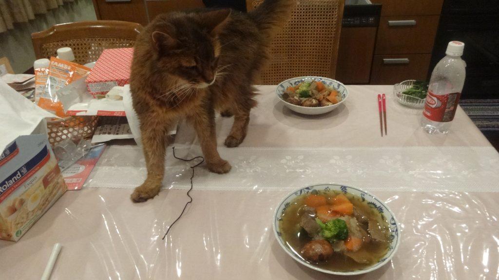 食卓の上のお皿をチェックするローズ