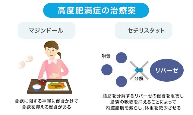 肥満治療薬の種類を示す図