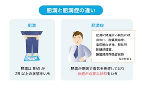 肥満と肥満症の違いを示す図2