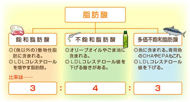 脂肪酸の分類図