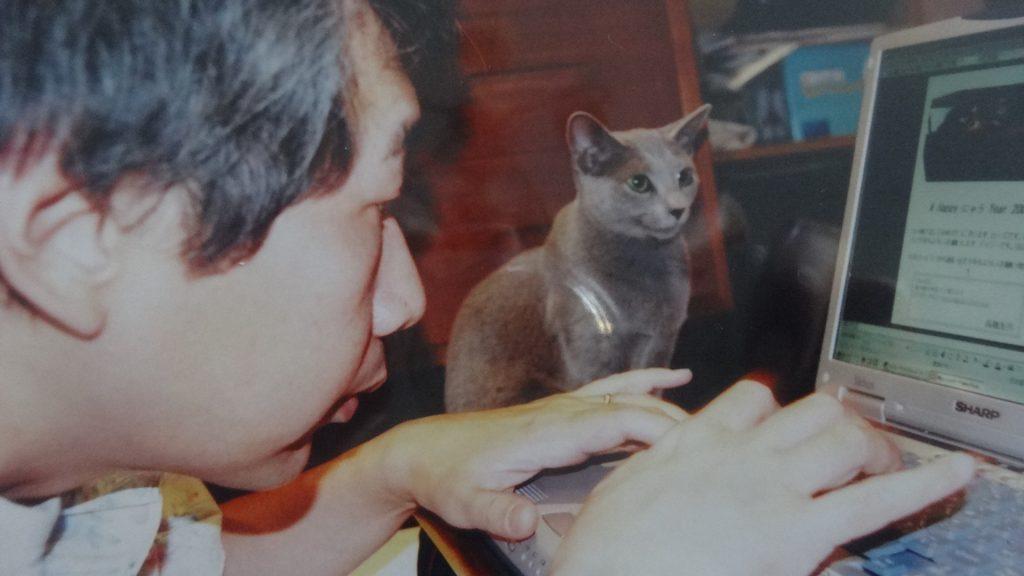 書き手の机の上でコンピューター画面を見るデイジー