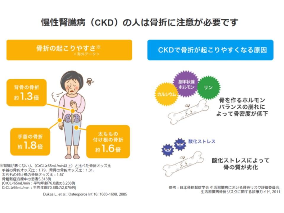 CKDの人の骨折が起こる頻度と骨折が起こりやすい原因の解説図