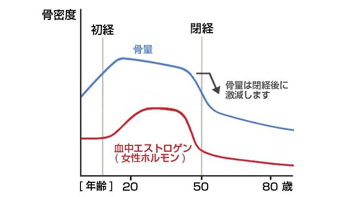 エストロゲン分泌の加齢による減少と骨量減少の関連を示したグラフ