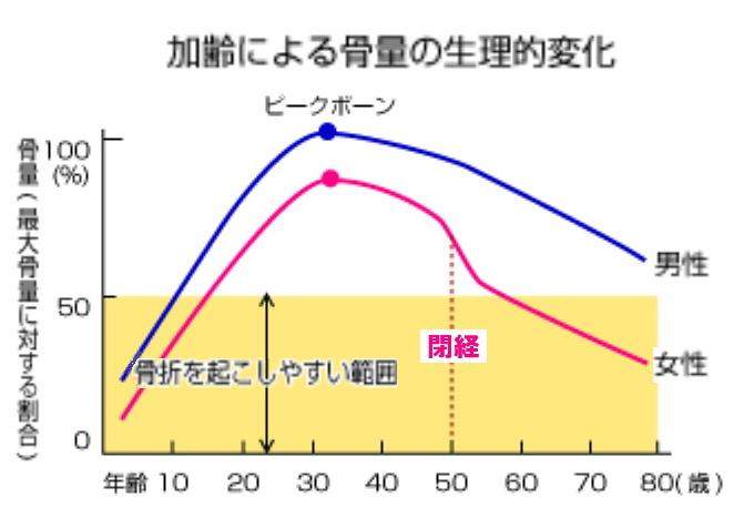 加齢による骨量の生理的変化を示したグラフ