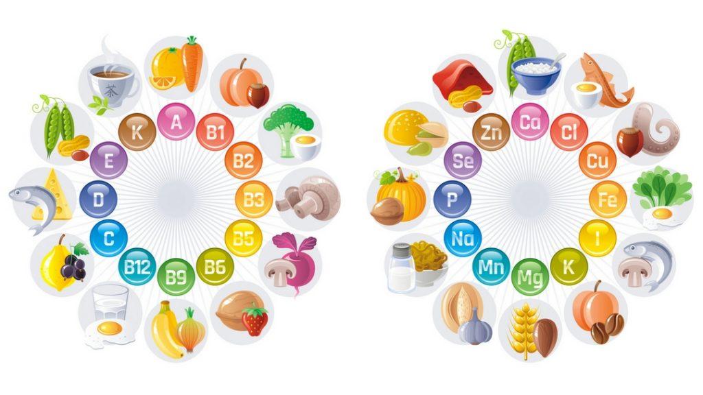 ビタミン ミネラルのまとめ図