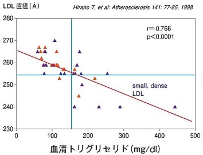 中性脂肪が高値だとLDLが小さくなることを示したグラフ