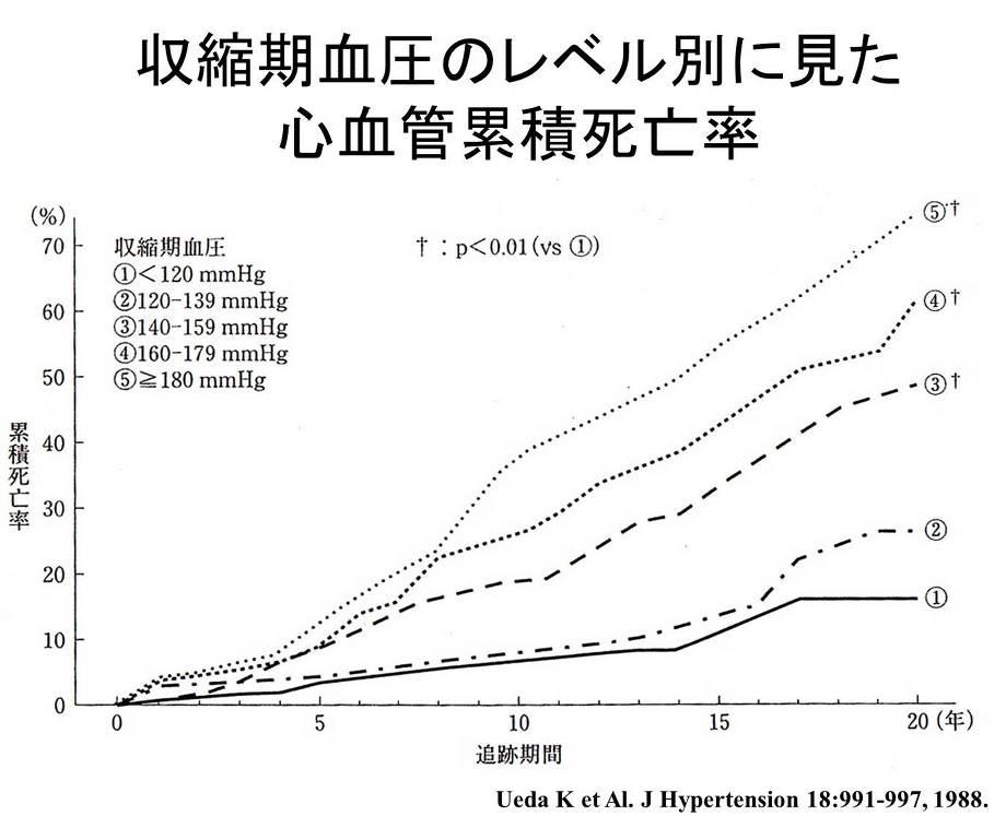 血圧の値別に見た心血管病による死亡率