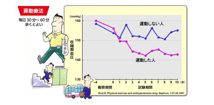 有酸素運動による降圧効果を示すグラフ