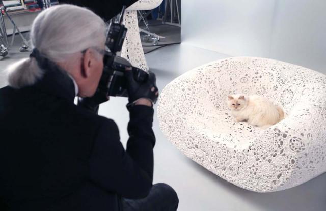 シュペットちゃんの写真を撮るラガーフェルド