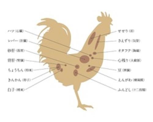 焼き鳥の希少部位を示した図